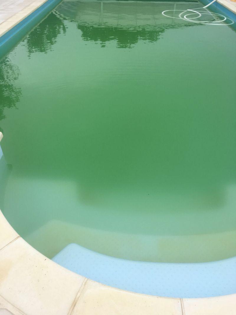 Piscine Très Très Verte Et Grosse Galère 157 Messages
